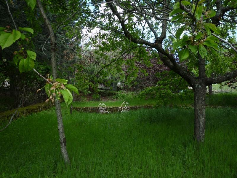 Rincones del jardin para recordar for Rincones de jardines pequenos